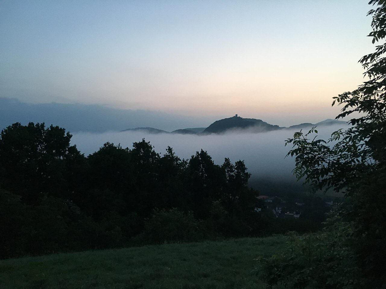 Blick vom Rolandsbogen über den Rhein im Nebel